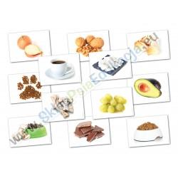 Co może jeść pies